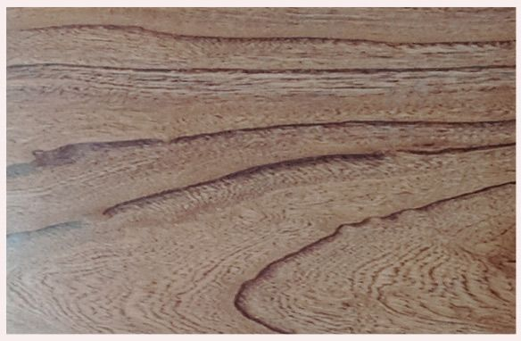 博木道家居---博天下良木、道万家幸福! 木材是有生命的,是摇曳在生命长河中的精灵,而这些精灵为人类带来无穷尽的益处。 木地板和木门也是有生命的,因为她们都是木材生命的延续,博木道建材有限公司就是致力于将摇曳于风中的树木精灵的生命通过高科技的手段进一步的优化,不仅将木材的所有特质展示的淋淋尽致,还通过雕琢、修色、压贴等方式让其更具美感,更好的为万家幸福服务。 博木道建材有限公司整合优质木材和先进设备,产品已经涵盖博木至尊实木地板、春木精髓实木地板、原
