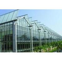 大连铝板大棚农业玻璃大棚钢结构大棚