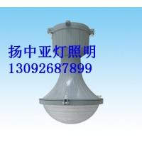 LJGC8003防火专用灯具、HGC281防电燃仓库灯