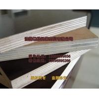 葫芦岛木模板