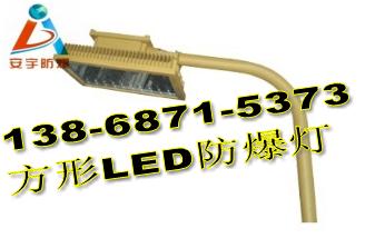 6米护拦式LED防爆道路灯150W-CCD97-L150h节