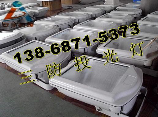 化工厂400W防震投光灯220V GT002-1X400W-