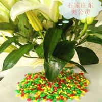 直供北京上海优质五彩石  鱼缸装饰 小区装饰