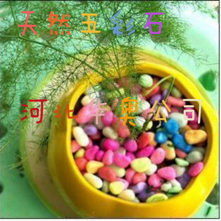 盆栽装饰 多肉绿植装饰 水培花瓶装饰用五彩石华奥