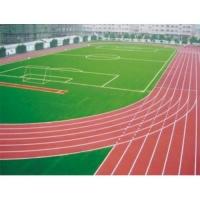塑胶跑道球场地坪-苏州立成建设