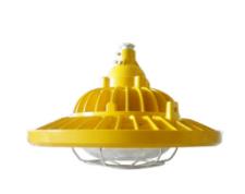 LED防爆泛光灯(投光灯)GBF0302L