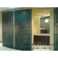 透明樹脂板門