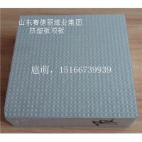 济宁-外保温板挤塑板b1b2级 普通板 顶板