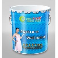 油漆涂料品牌代理大自然漆开店年赚30万零风险投资