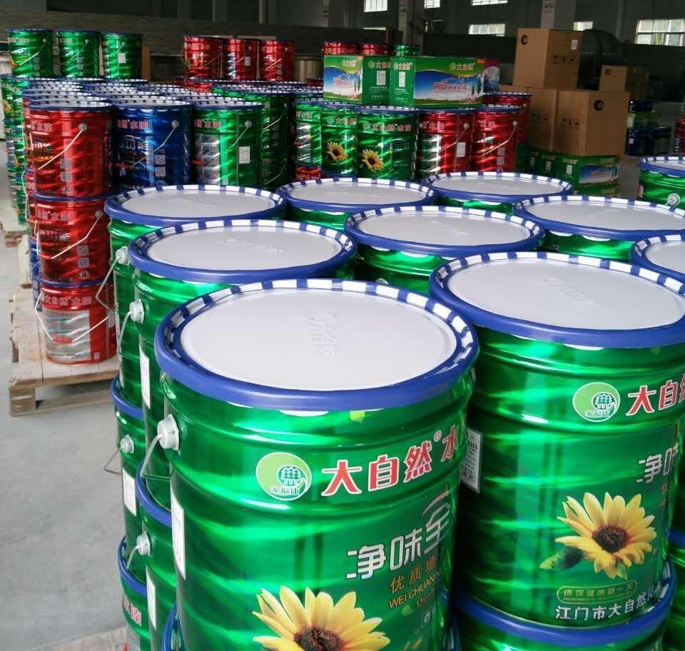 广东江门厂家大自然涂料 水漆 净味多功能墙面漆代理