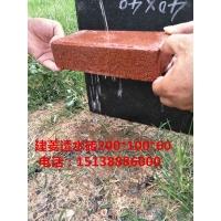 厂家直销郑州200*100*50建菱砖舒布洛科砖通体砖