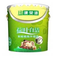 供应外墙乳胶漆/耐候晴雨外墙乳胶漆/工程外墙乳胶漆
