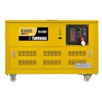 30KW汽油发电机(燃气发电机)