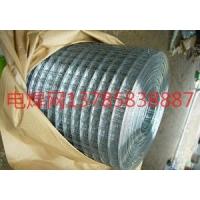 黑丝电焊网,电镀锌电焊网,热镀锌电焊网,pvc包塑电焊网