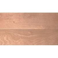 红河林实木地板-枫木本色