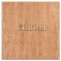 新款600x600木纹防滑砖CCB6009