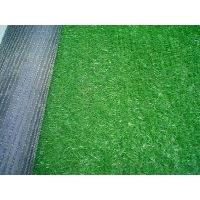 人造草坪 便宜草坪 底价人造草坪 假草坪