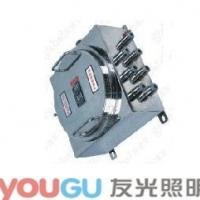 BQJ-1不锈钢防爆配电箱