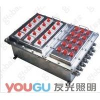 BQJ不锈钢防爆配电箱