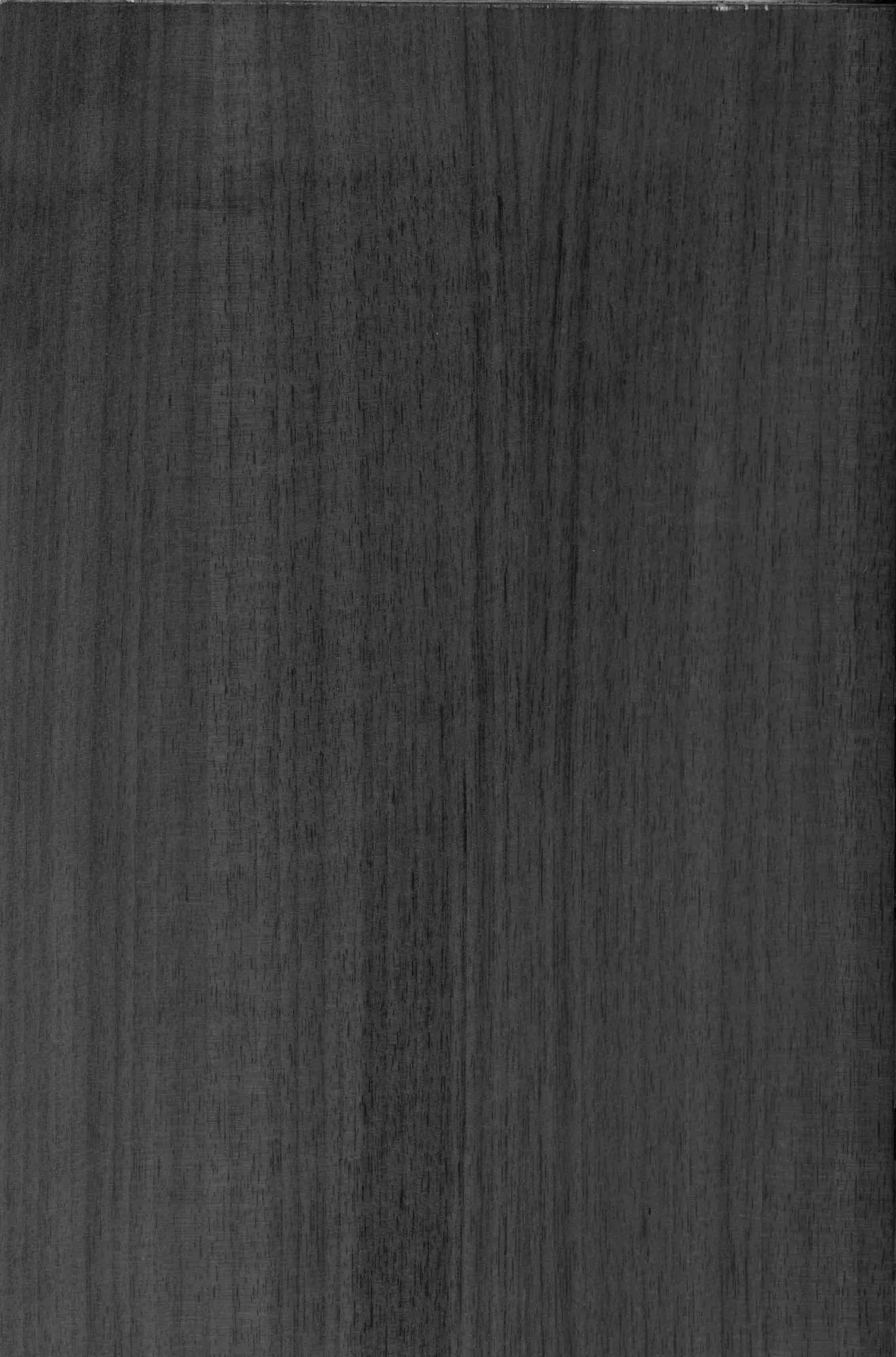 黑胡桃 面板