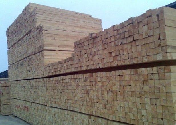 辐射松的用途十分广泛,这也是其他针叶树种难以比拟的。辐射松为中密度、结构均匀、收缩效率平均、稳定性强的优质软材。完好的原木不存在腐朽、心腐和虫咬等问题;木材握钉力好,渗透性强,极易防腐,干燥、固化和上色等处理。 辐射松是建造木房的好材料,分布在新西兰城乡漂亮舒适的住房,大多是用辐射松材建造,使用寿命可达百年以上。 辐射松还可用于大型建筑,如新西兰国家林业研究所的主楼是辐射松木结构建筑。辐射松是制造人造板的优质材料,新西兰生产的各类人造板基本上都用辐射松材, 产品畅销澳大利亚、日本、韩国和新加坡等市场。辐射