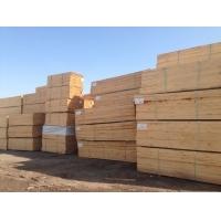 辐射松木方,辐射松板材,辐射松口料,辐射松价格