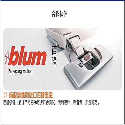 百隆Blum