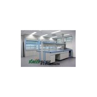 潍坊实验室家具|潍坊通风橱气瓶柜|潍坊天平台器皿柜1011
