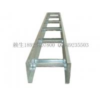 广信深圳梯级式热浸锌桥架深圳热浸锌电缆桥架