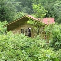 卧龙森林木屋50