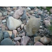 鹅卵石,河卵石,鹅卵石供应,天然鹅卵石厂家