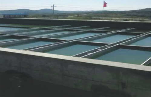 LM-VRA-II型水性聚酯复合防腐防水涂料